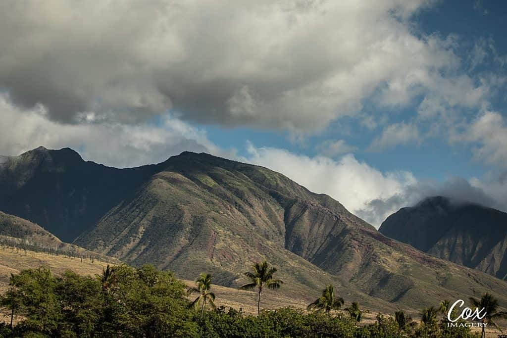 Shot with Telephoto Lens in Maui